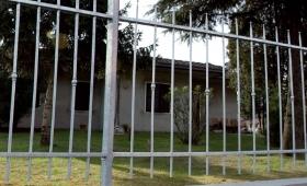 recinzioni-modulari-modello-caramella